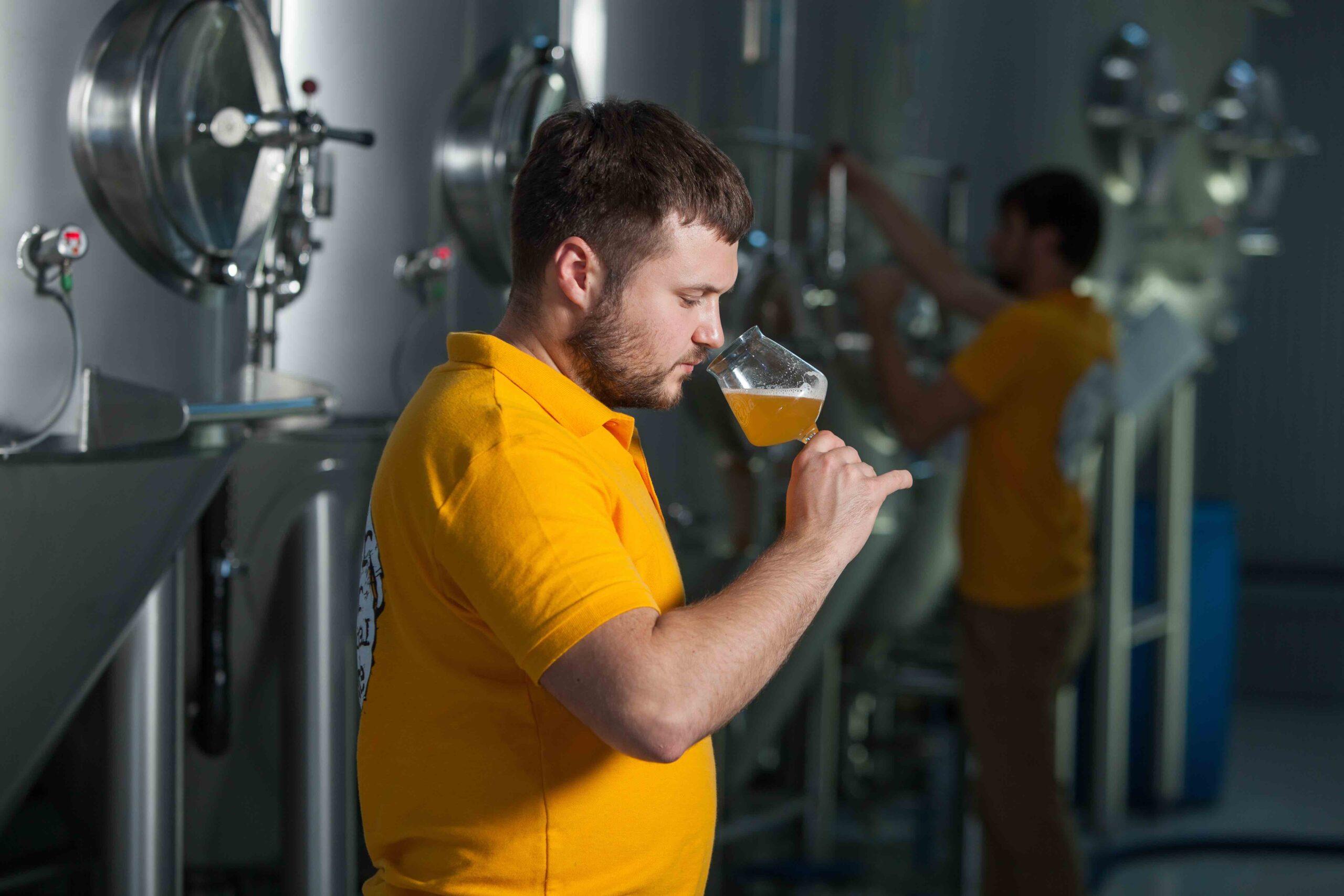 Birra Bevande degustazione