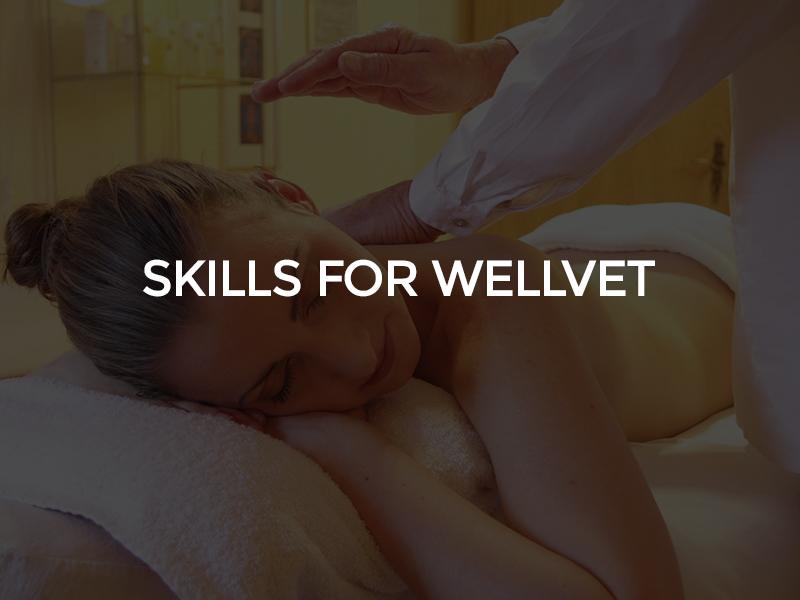 skills Wellvet