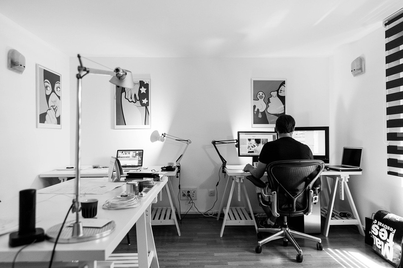 Web design e videografica